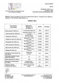 31X62 - Caratteristiche Tecniche EN 14411/ISO 13006-L - (2/3)